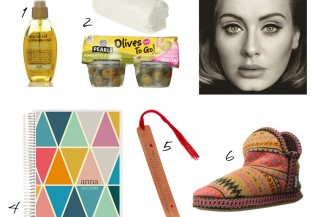 argan hair oil, goat cheese, green olives, adele, erin condren, copper stamped book mark, muk luk slippers, carly's december 2015 favorites.